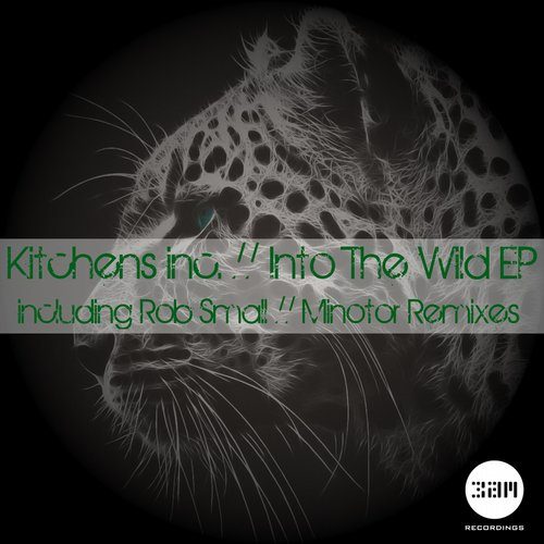 Kitchens Inc. – Into The Wild EP on 3am Recordings